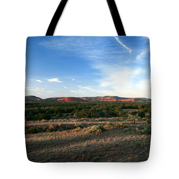 Tote Bag featuring the photograph Somewhere Off The Interstate In New Mexico by Lon Casler Bixby