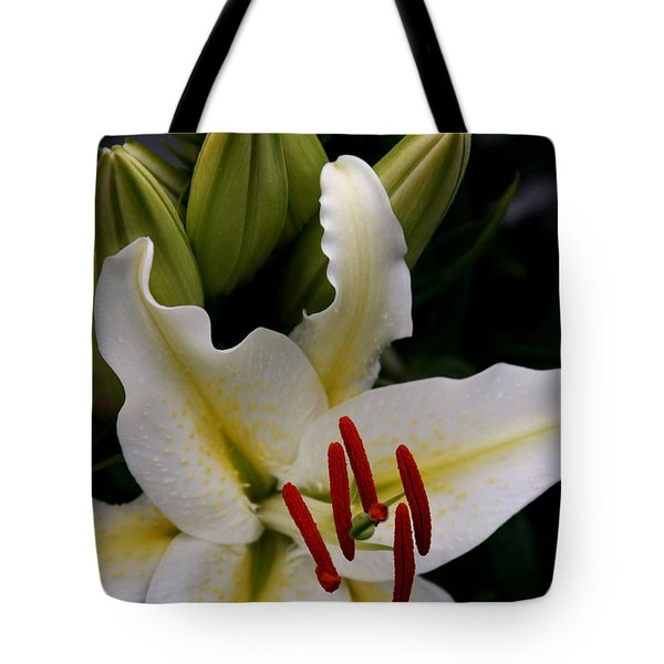 Sounding On Forever Tote Bag by Sharon Mau