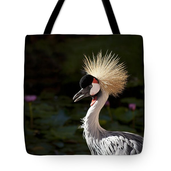 South African Grey Crowned Crane Tote Bag by Sharon Mau