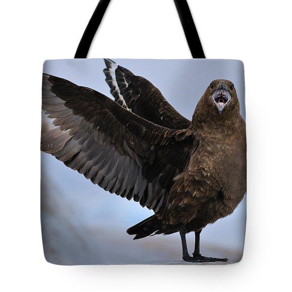South Polar Skua Tote Bag by Tony Beck