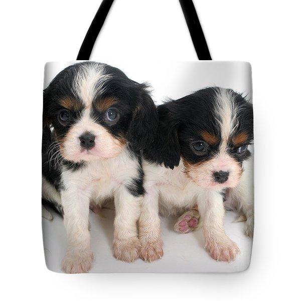 Spaniel Puppies Tote Bag by Jane Burton