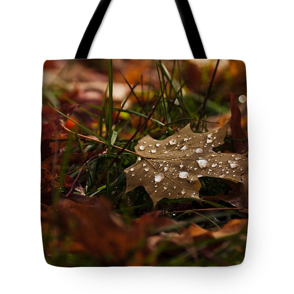 Tote Bag featuring the photograph Sparkling Gems by Cheryl Baxter