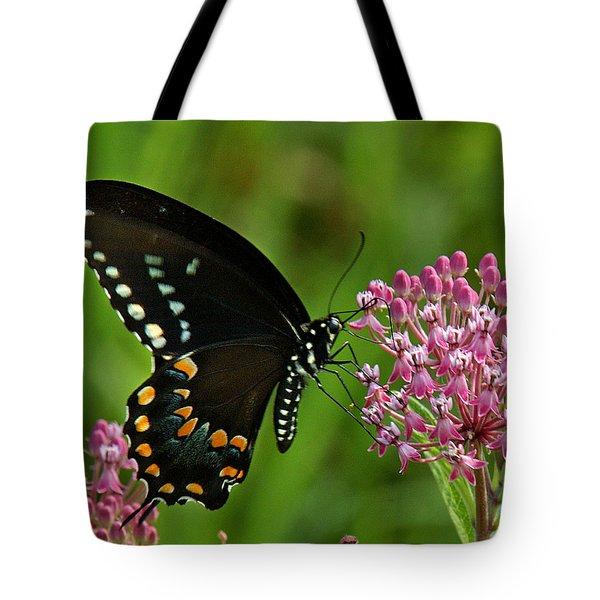 Spicebush Swallowtail Din039 Tote Bag