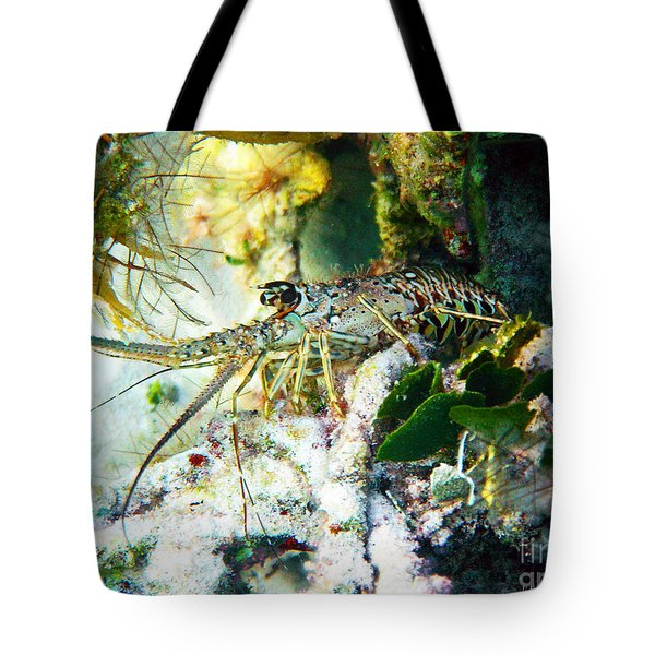 Tote Bag featuring the photograph Spiny by Li Newton