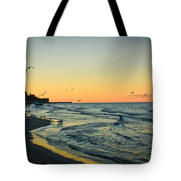Tote Bag featuring the photograph Spirit's Journey by Sara Frank