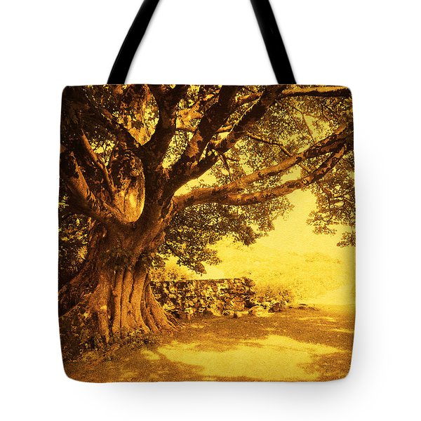 Spiritual Place. Wicklow Mountains. Ireland Tote Bag by Jenny Rainbow