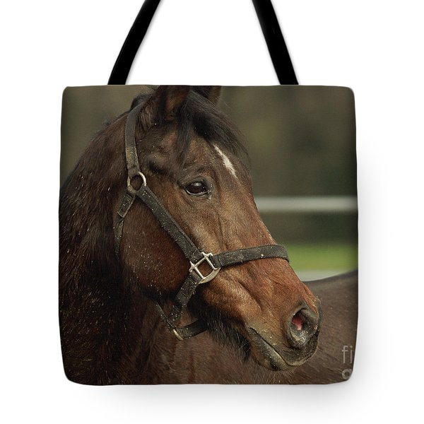 Tote Bag featuring the photograph Splattered by Doug Herr