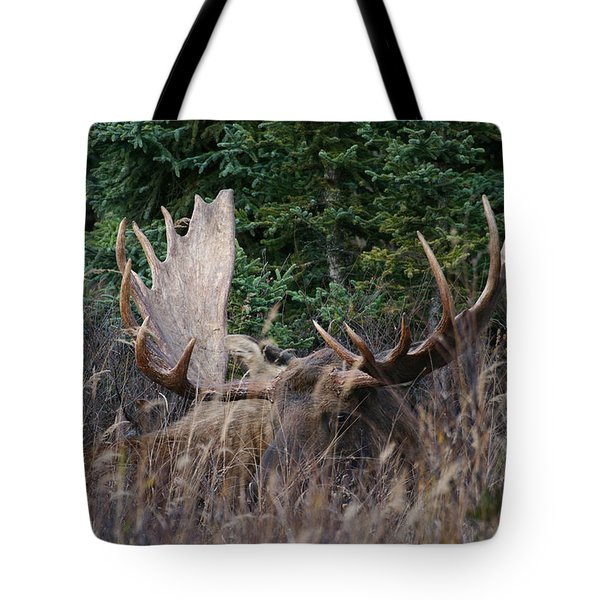 Tote Bag featuring the photograph Splendor In The Grass by Doug Lloyd