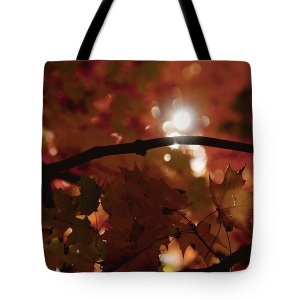 Tote Bag featuring the photograph Spotlight On Fall by Cheryl Baxter