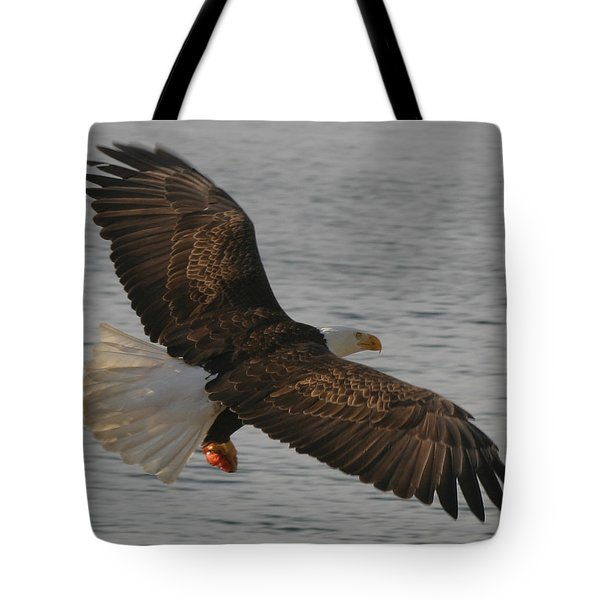Spread Eagle Tote Bag by Kym Backland