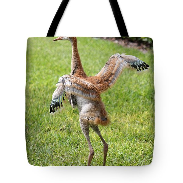 Spread Your Wings And Try To Fly Tote Bag