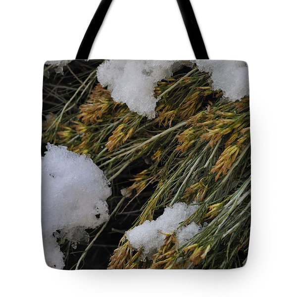 Tote Bag featuring the photograph Spring Arrives by Ron Cline