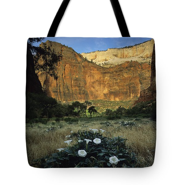 Spring At Big Bend Tote Bag