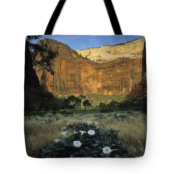 Spring At Big Bend Tote Bag