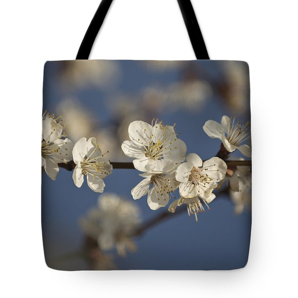 Spring Blossoms Tote Bag by Ayhan Altun