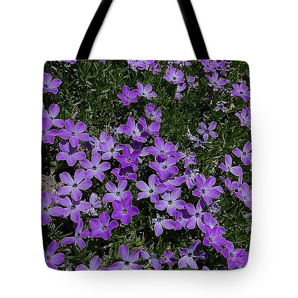 Spreading Flox Wildlfower Tote Bag by Blair Wainman