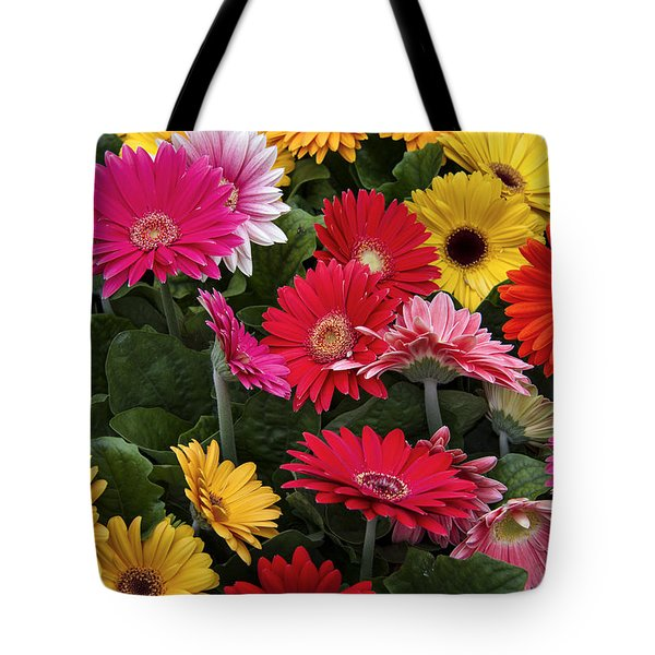 Spring Colors Tote Bag