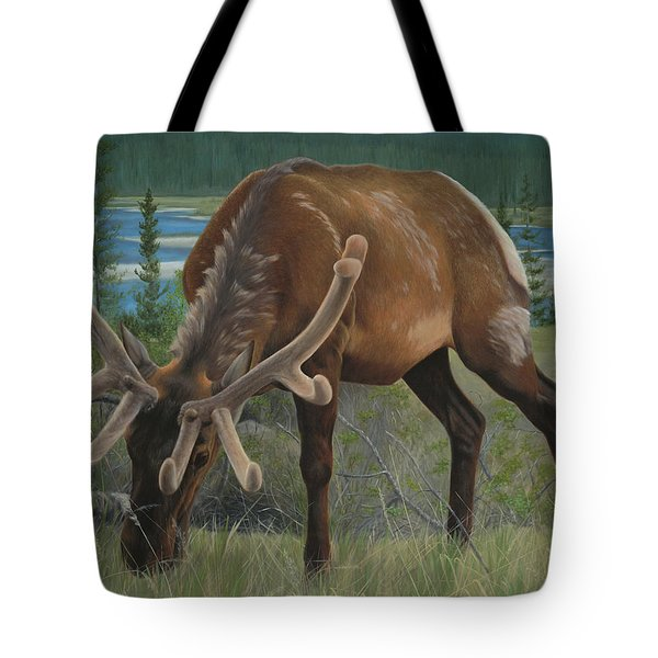 Tote Bag featuring the painting Spring Gazing by Tammy Taylor