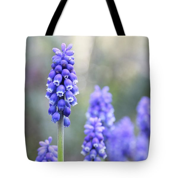 Spring Grape Hyacinth Flowers Tote Bag by Jennie Marie Schell