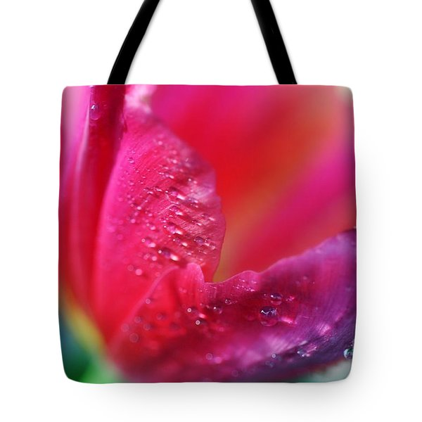 Spring Is Near... Tote Bag