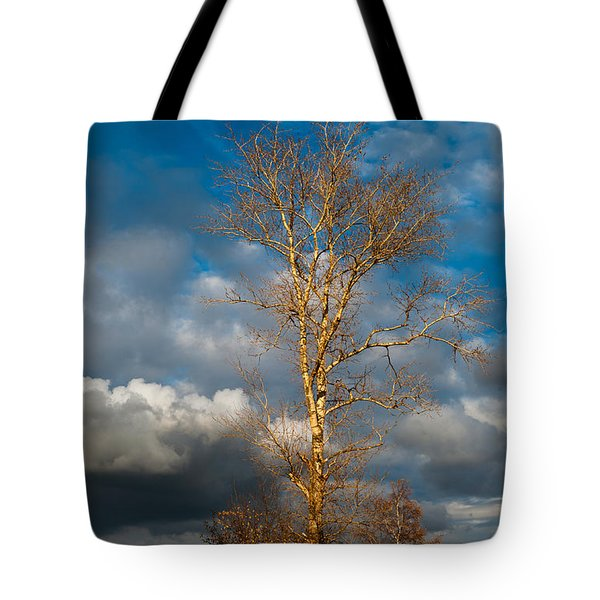 Spring Light In Autumnal Day Tote Bag by Jenny Rainbow