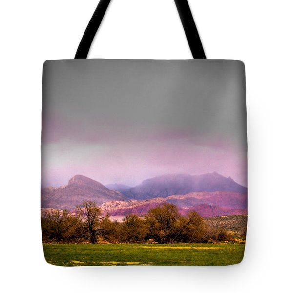 Spring Mountain Ranch In Red Rock Canyon Tote Bag by David Patterson