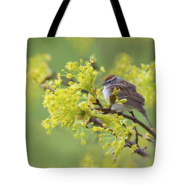 Spring Reverie Tote Bag