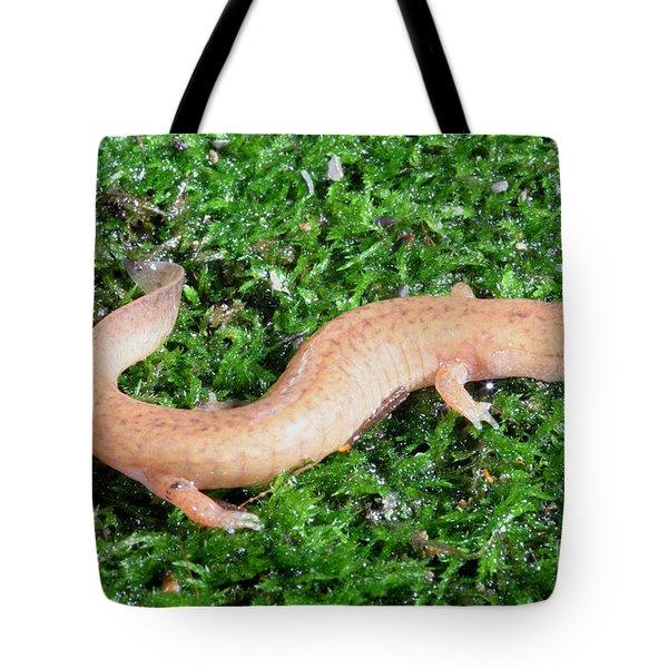 Spring Salamander Tote Bag by Ted Kinsman