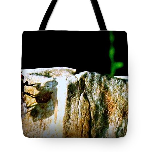 Tote Bag featuring the photograph Spring Sunbath  by Danielle  Parent