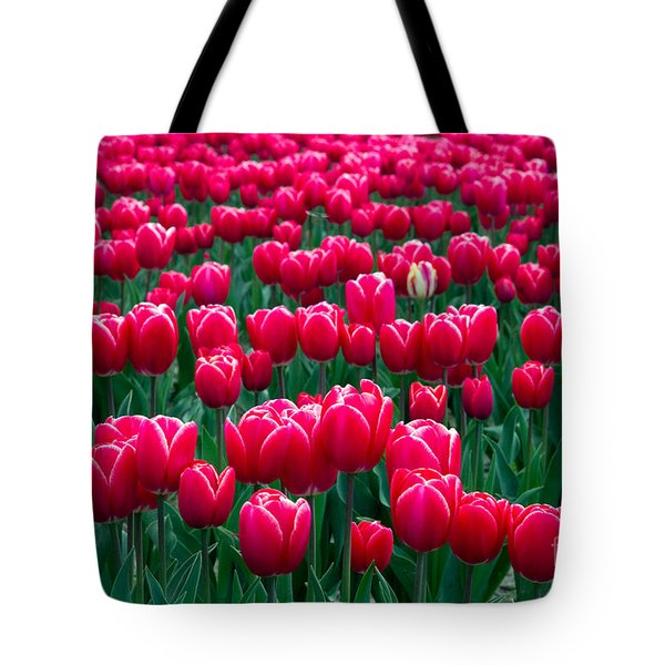 Spring Tulips Tote Bag by David R Frazier and Photo Researchers