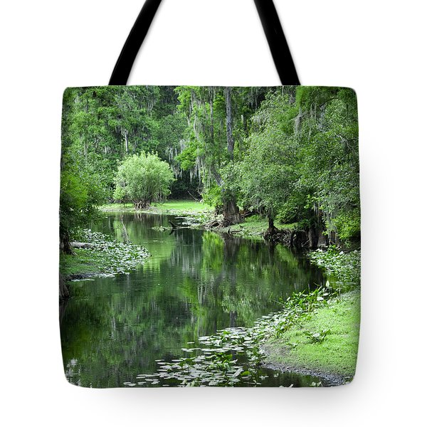 Springtime On The Lake Tote Bag by Carolyn Marshall