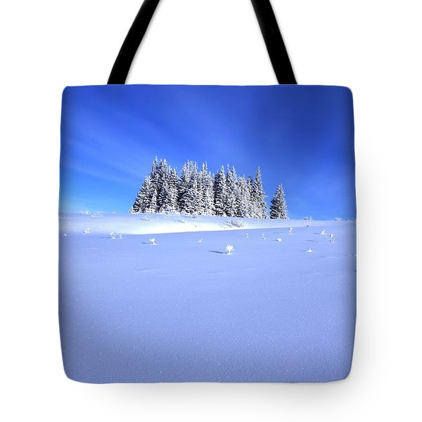 Spruce Grove In Winter Tote Bag