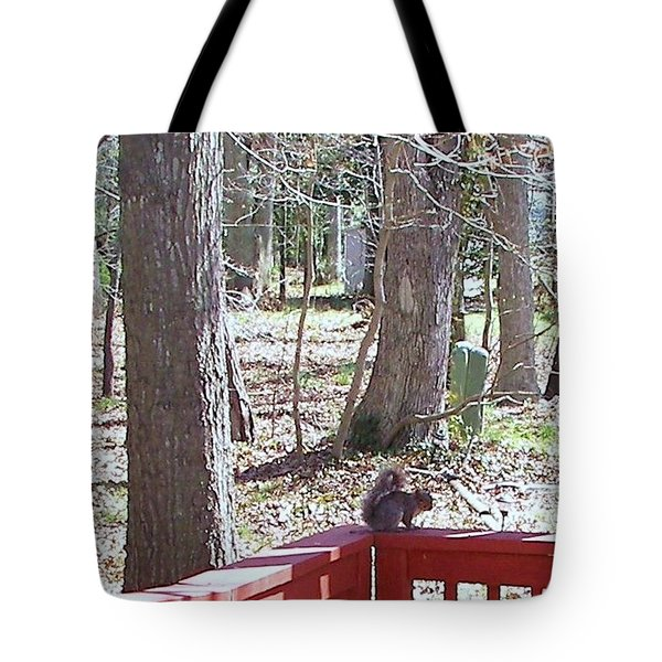 Tote Bag featuring the photograph Squirrel Waiting by Pamela Hyde Wilson