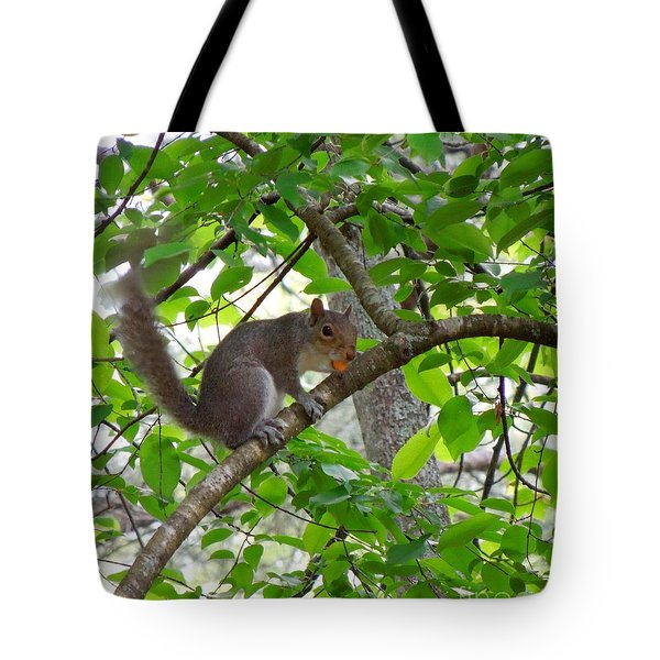 Tote Bag featuring the photograph Squirrel With Candy by Renee Trenholm