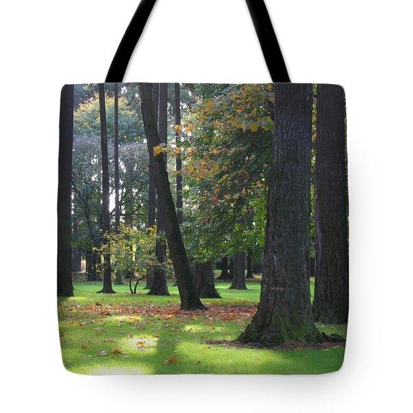 St. John's Trees Tote Bag