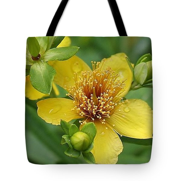 Tote Bag featuring the photograph St John's-wort by Bruce Bley