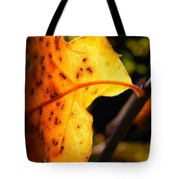Stained Glass Of Autumn Tote Bag by Leah Moore