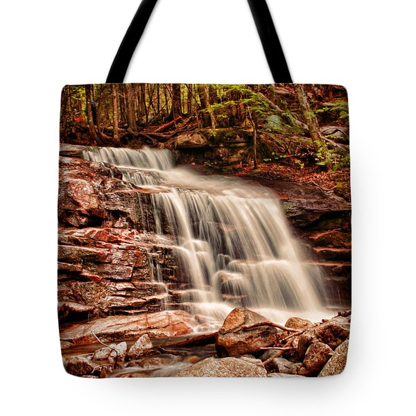 Stairs Falls Tote Bag by Heather Applegate