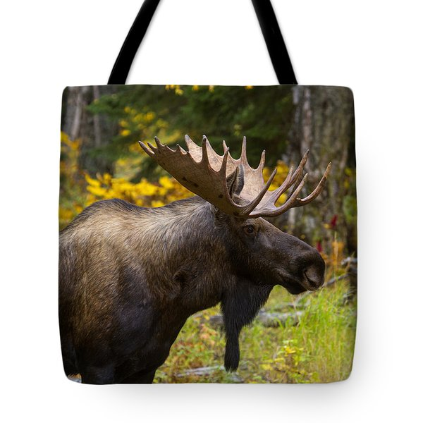 Tote Bag featuring the photograph Standing Proud by Doug Lloyd
