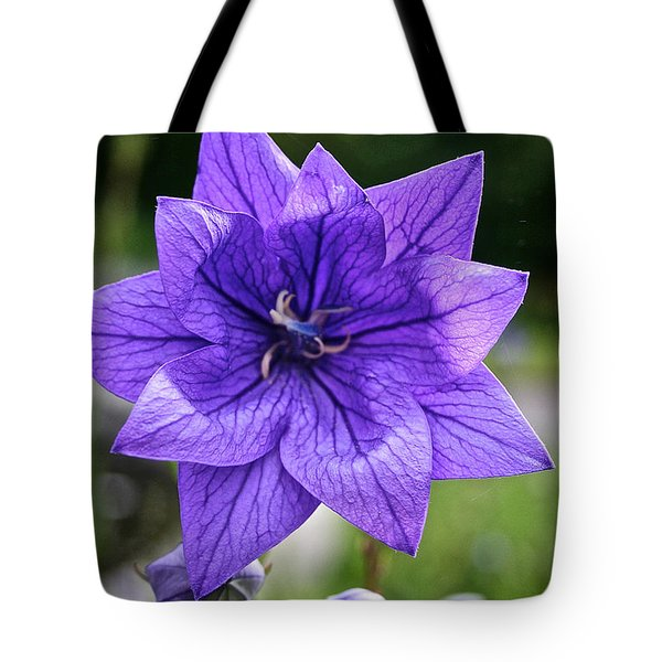 Star Balloon Flower Tote Bag by Susan Herber