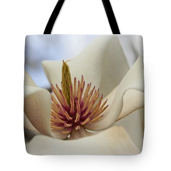 Star Magnolia Tote Bag by Benanne Stiens