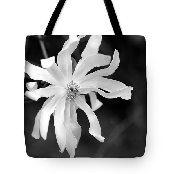 Star Magnolia Tote Bag by Lisa Phillips