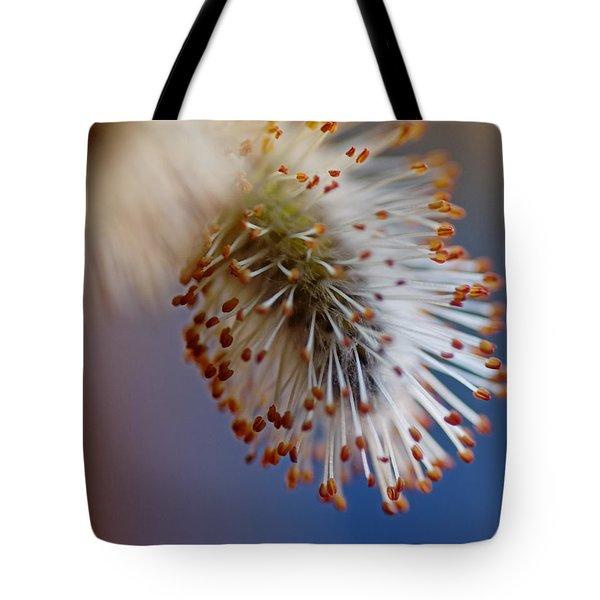Starburst Tote Bag by Susan Capuano