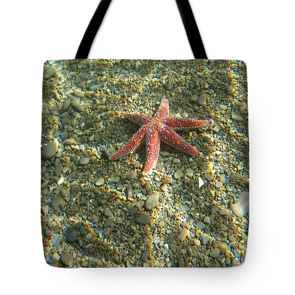 Starfish In Shallow Water Tote Bag by Ted Kinsman
