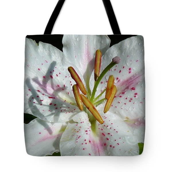 Tote Bag featuring the photograph Stargazer Lily by Lynn Bolt