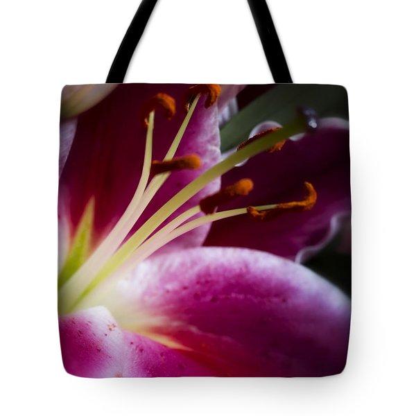 Stargazer Lily Portrait Tote Bag