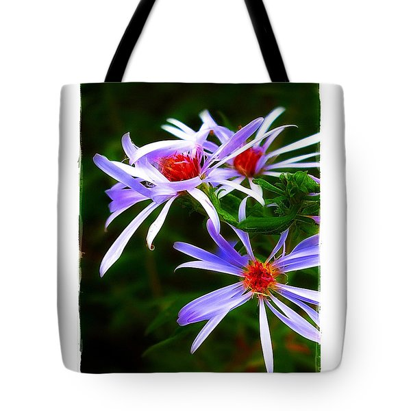 Stars Of Spring Tote Bag by Judi Bagwell