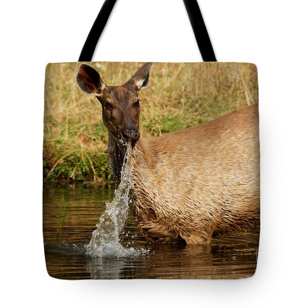 Tote Bag featuring the photograph Startled by Fotosas Photography