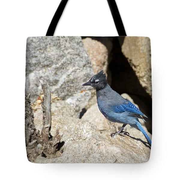 Stellers Jay Tote Bag