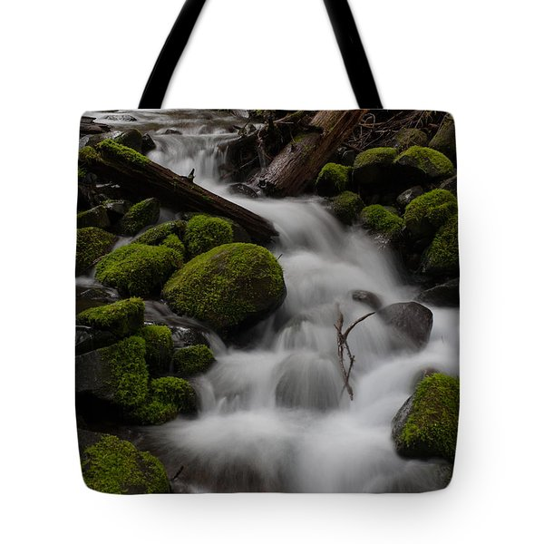 Stepping Stones Tote Bag by Mike Reid